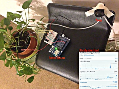 Plant Monitoring and Care - Using the Intel Edison