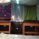 Multi Level Indoor Fort