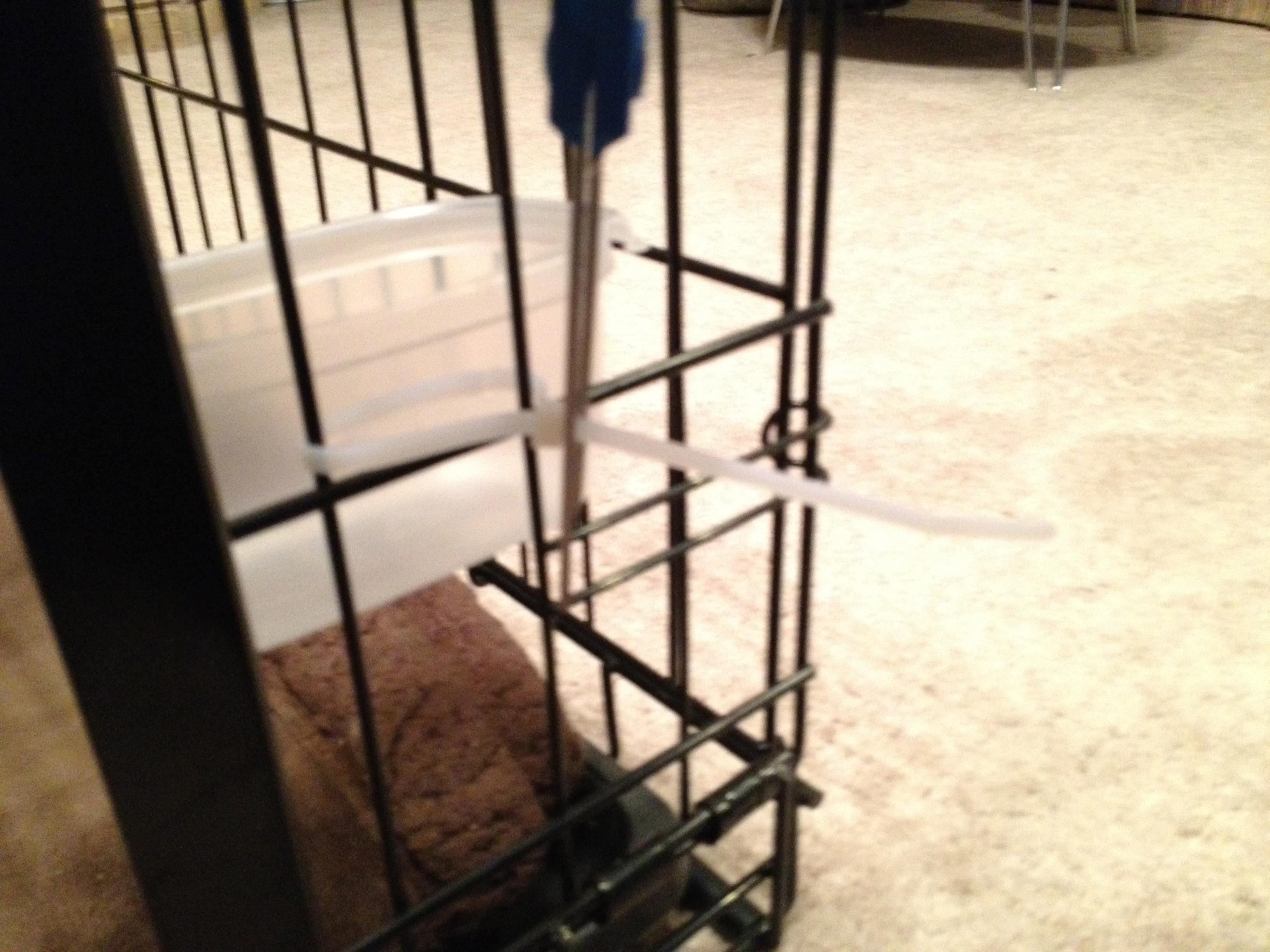 Picture of Quick & Easy Dog Food Dish for Dog Crates