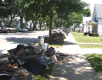 Picture of Council Cleanup