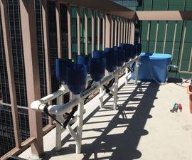 Urban Gardening - Balcony Hydroponics