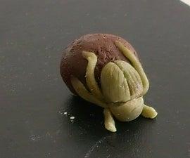 Dung Beetle Truffles
