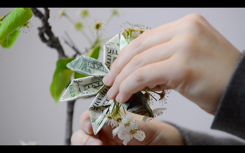 Planting a Real Branch in Money and Decorating With Cash Flowers