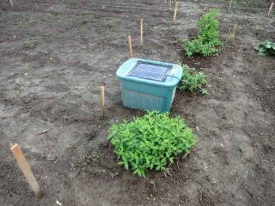 Deer Deterrent / Repeller for Your Garden Using a Solar Powered Mp3 Player to Play a Person Talking