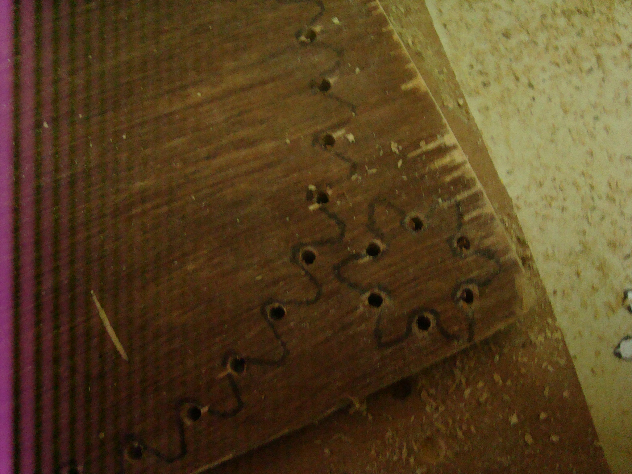 Picture of Some Drilling (42 Holes!)