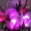 LED Rose Bouquet-Powered by a 5 Volt Portable Phone Charger