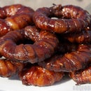BBQ Bacon Cheeseburger Onion Ring Recipe