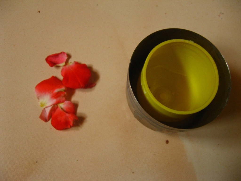 Picture of Fun Projects: Hurricane Shell With Embedded Rose Petals