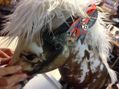 Decorate Your Pony