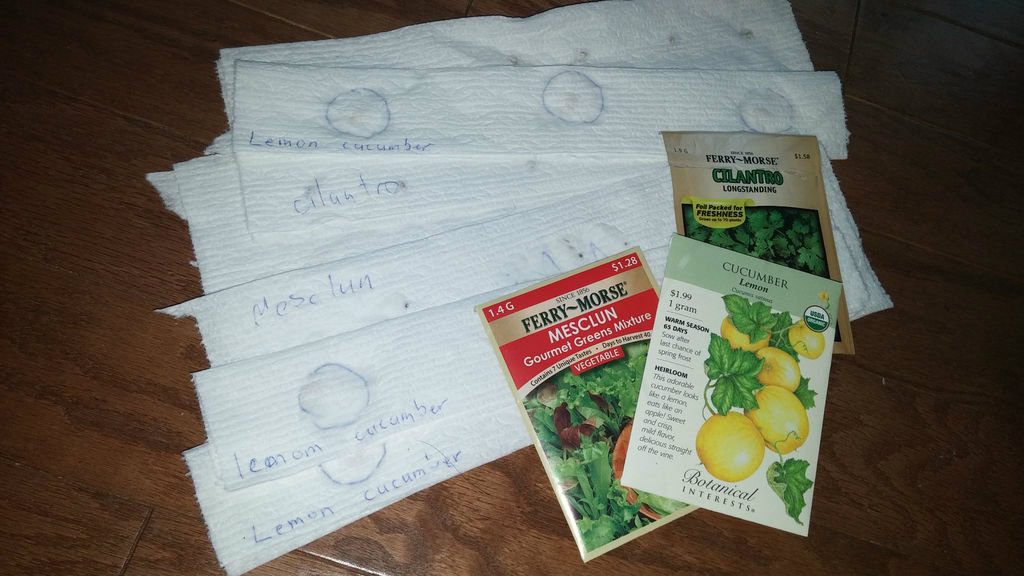 Picture of How to Make Seed Tape With Seeds of Any Size