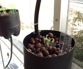 Large 24 Plant Hydroponic System from recycled 2 Liter Soda Bottles