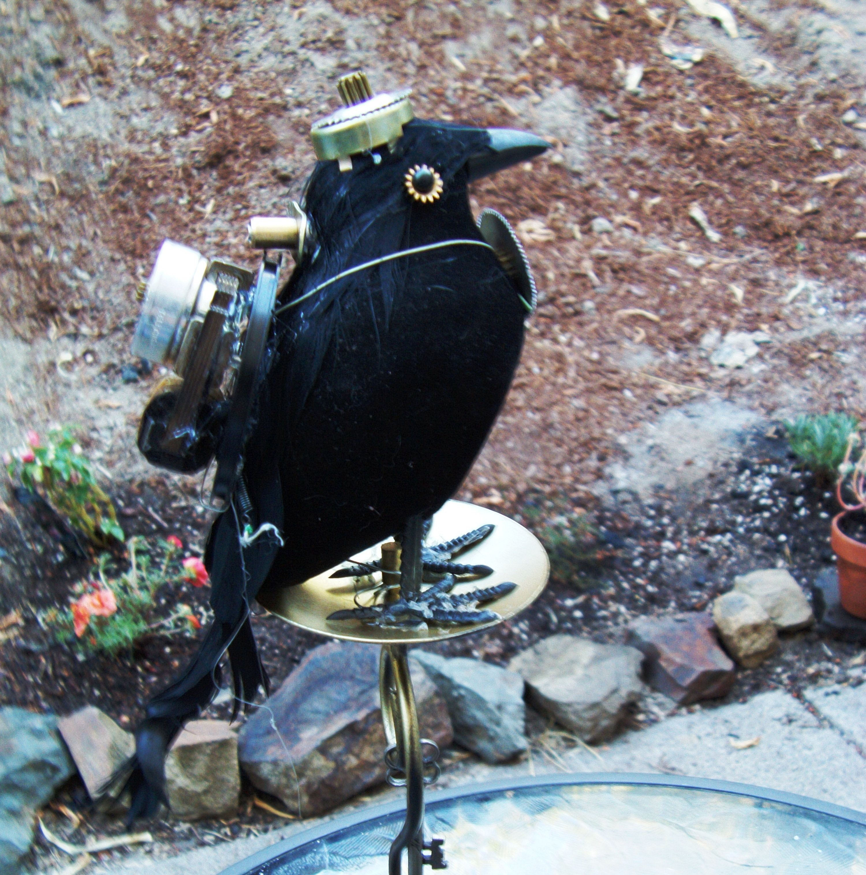 Picture of Crow Keyguard