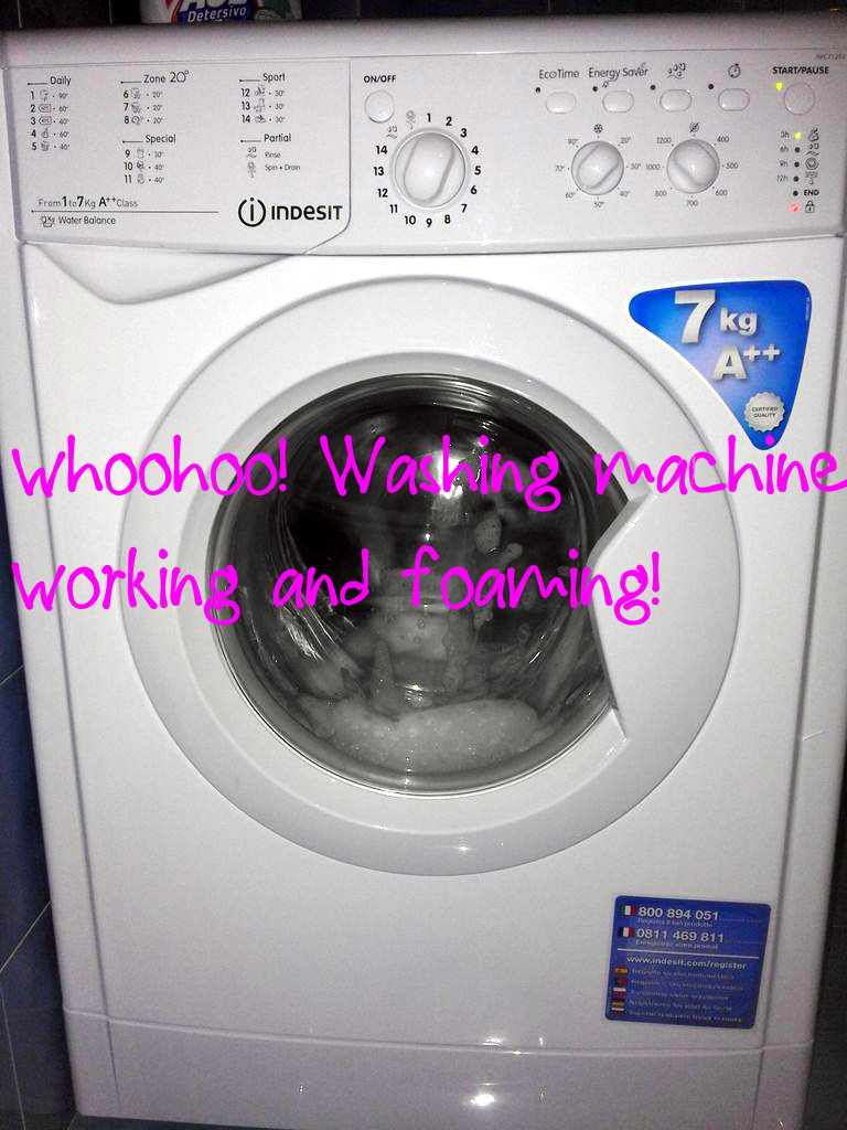 Picture of The First Wash Cycle