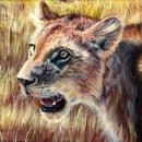 Portrait of a Lion