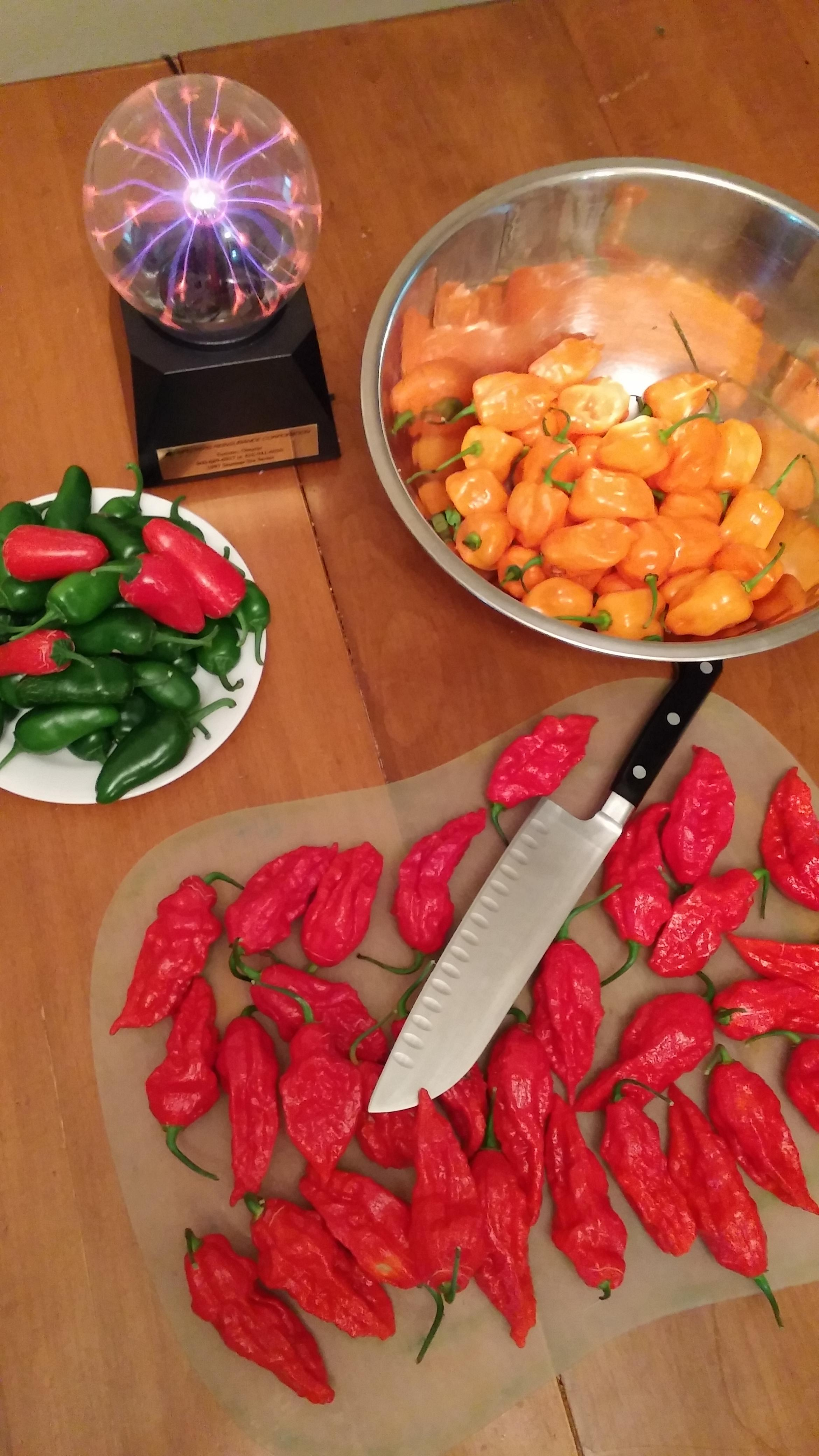 Picture of Dehydrate Your Peppers