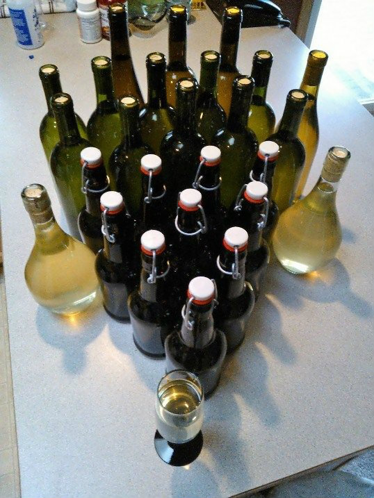 Picture of Basic Mead Recipe (Honey Wine)