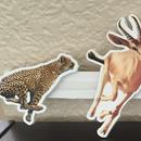 Shoo, Cheetah, Shoo!