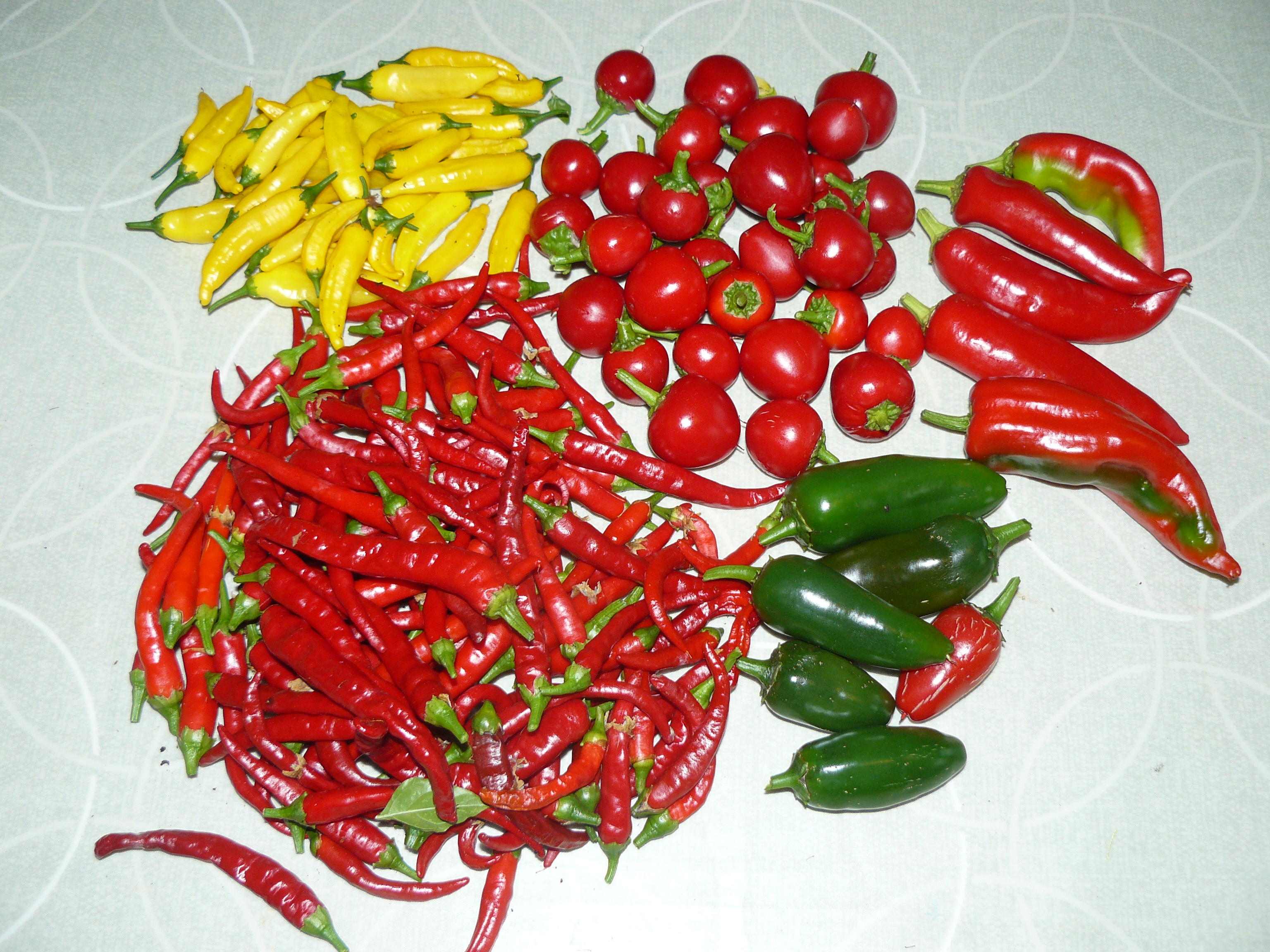 Picture of Preserving Chillies: Jam, Flakes, Powder