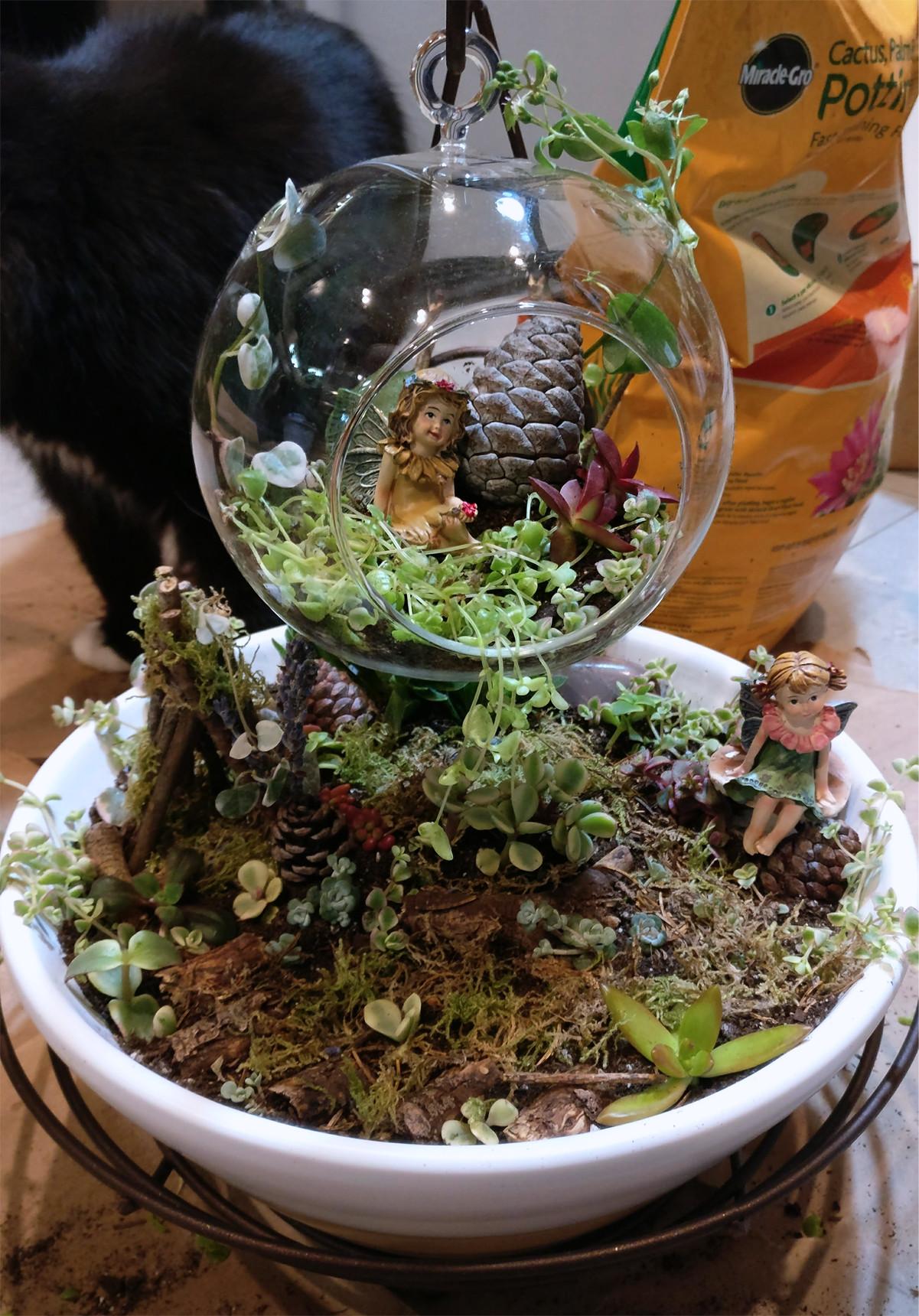Picture of Fruit Basket Fairies Garden