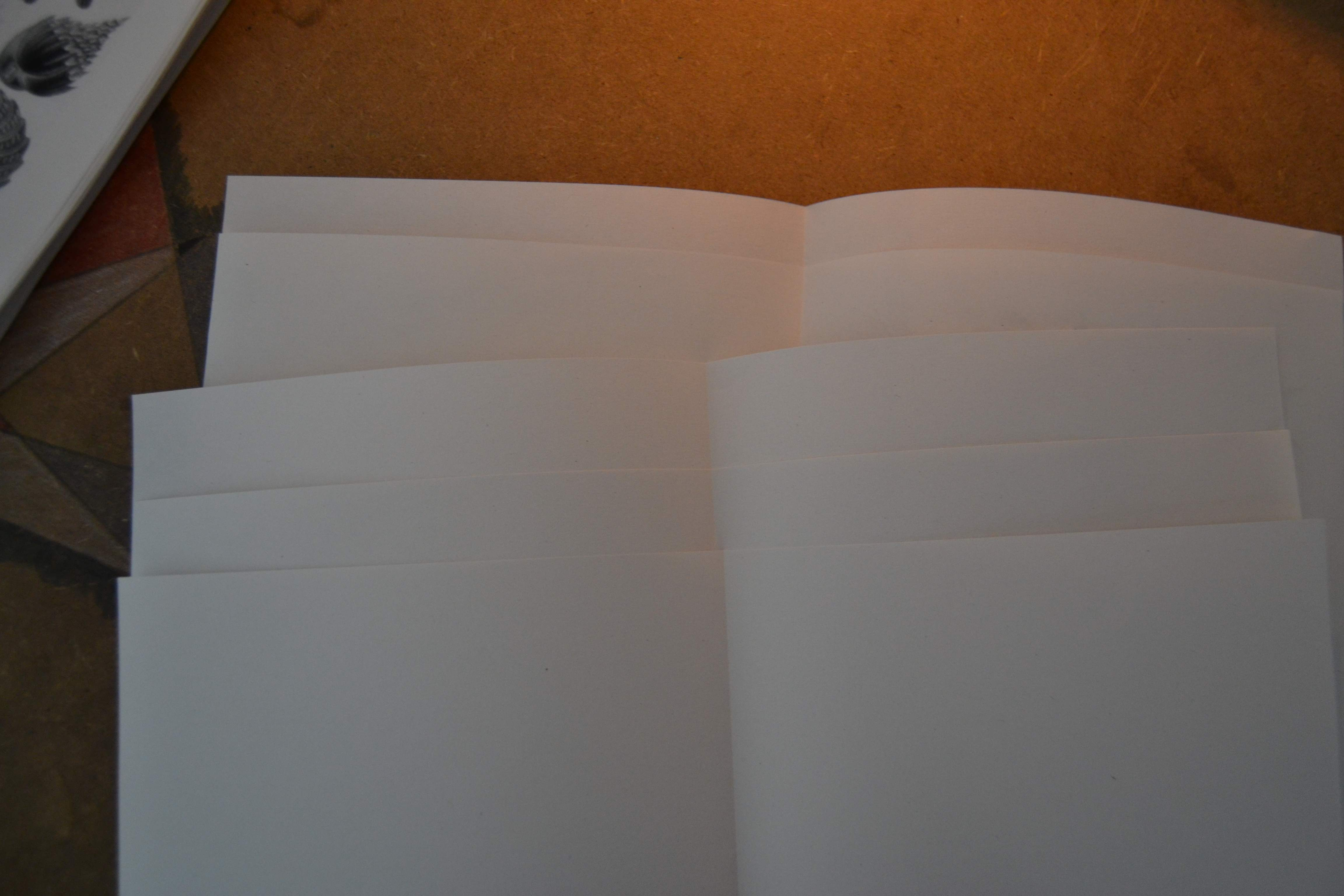 Picture of Prepare the Pages, Part 1