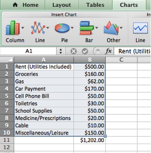 Creating a College Budget in Microsoft Excel