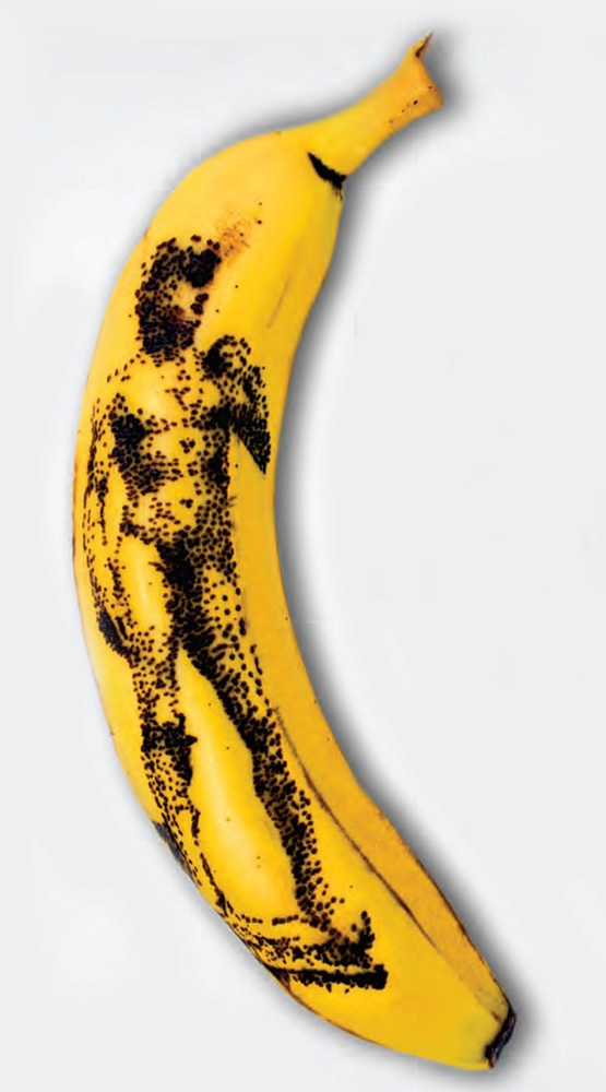 Picture of More Banana Art
