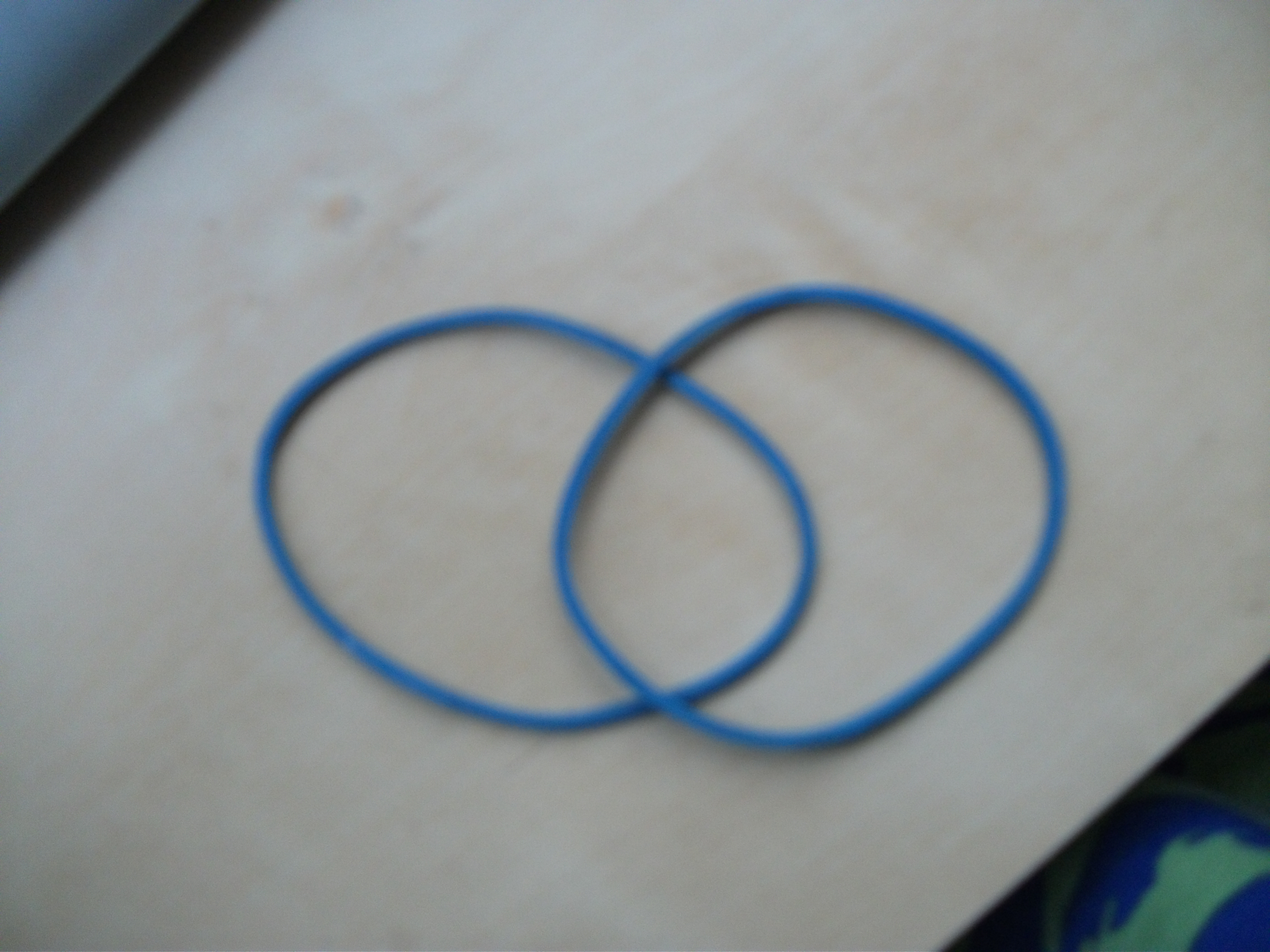 Picture of The Elastic Band