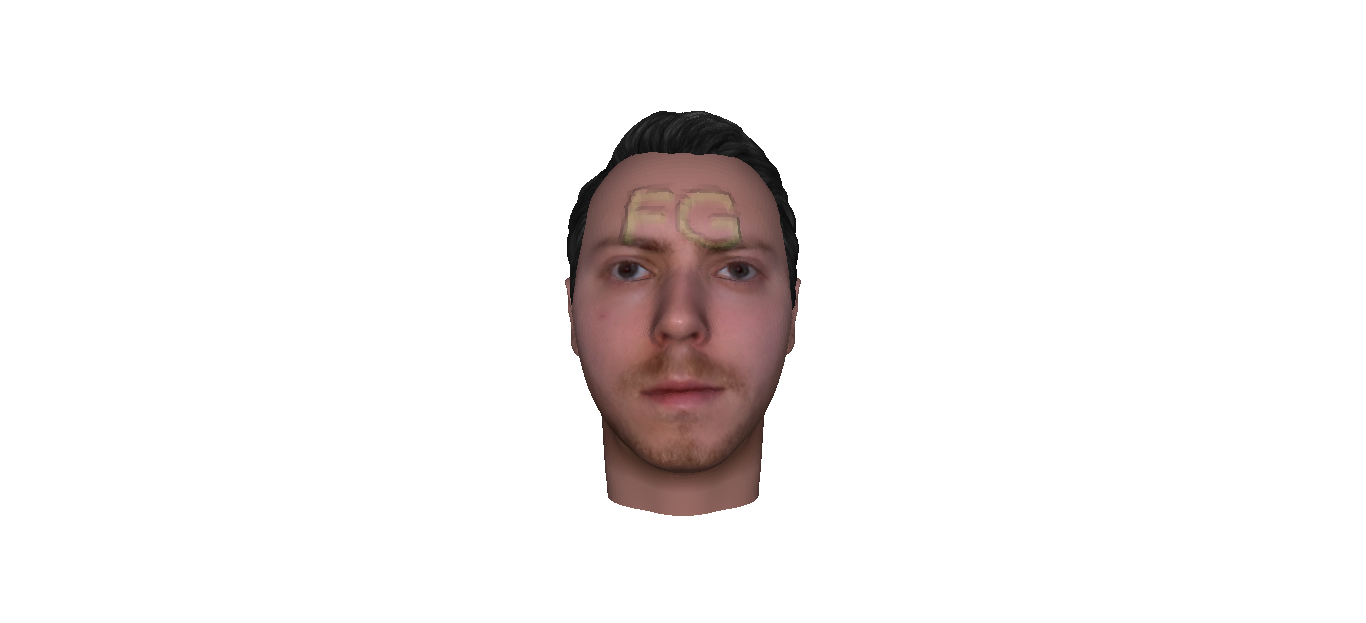 Picture of The 3d Face