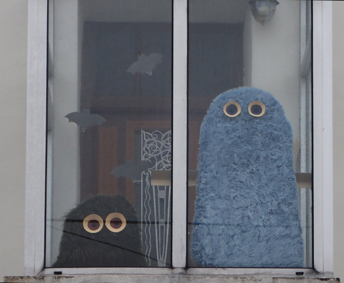 Picture of Furry Monsters Behind the Windows