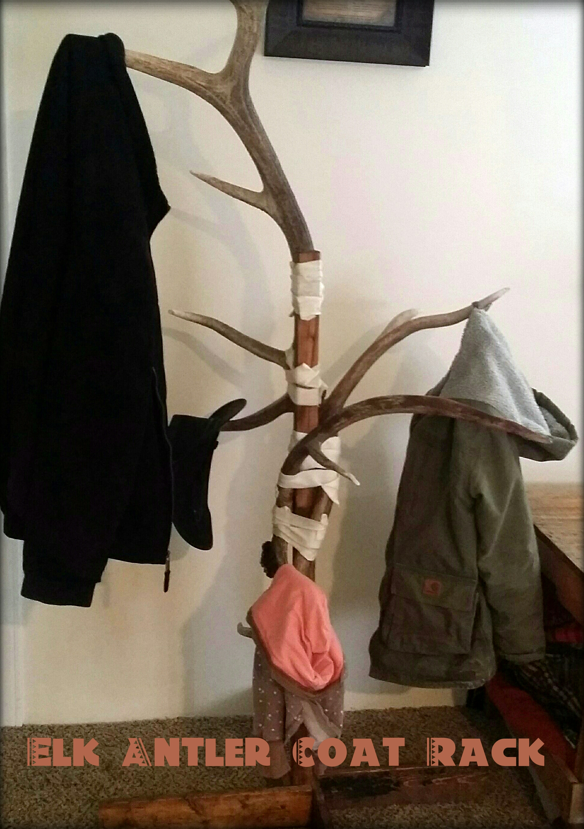 Picture of Antler and Rawhide Coat Rack