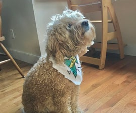 Cute Dog Bandana