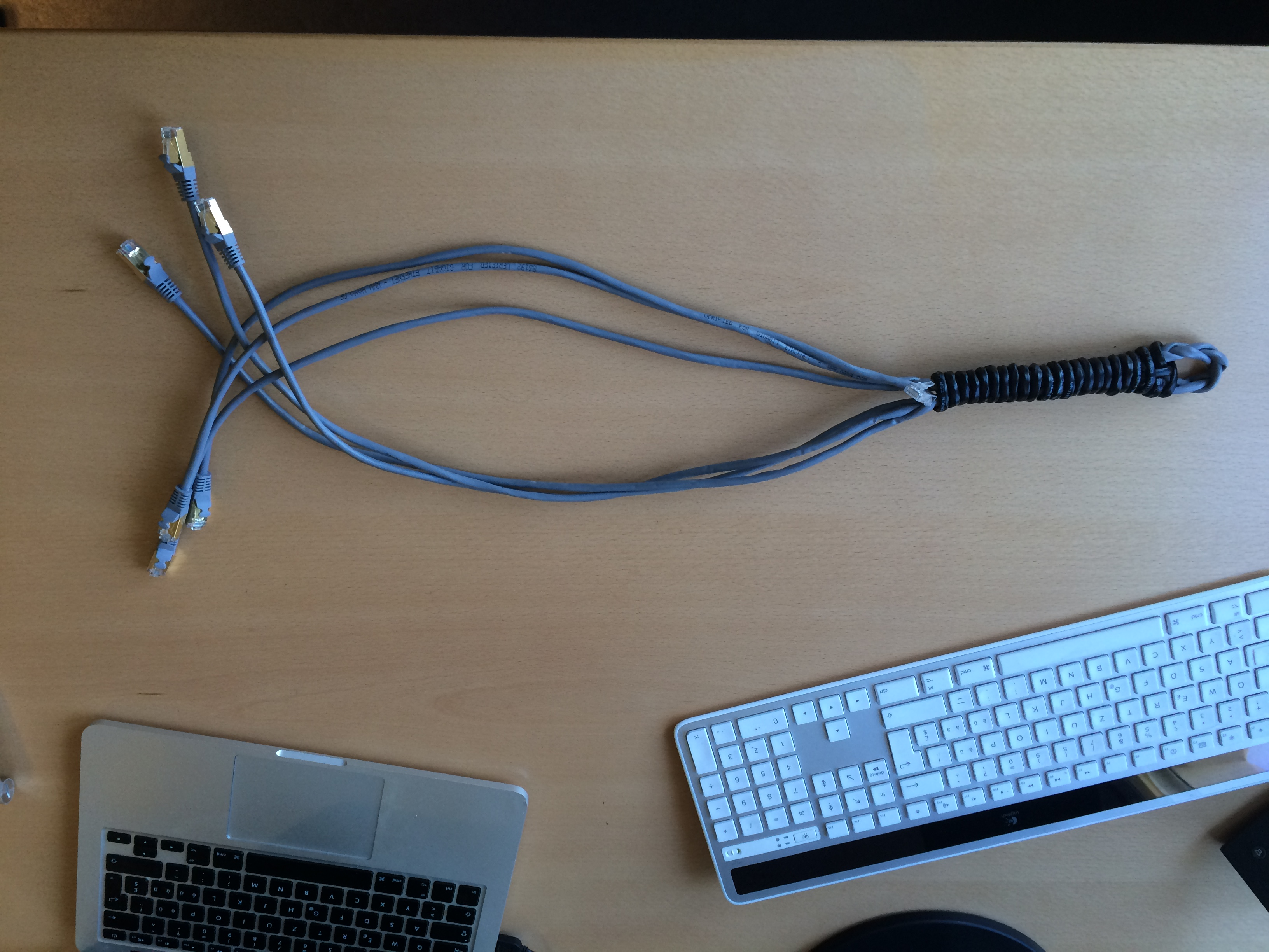 Picture of Ethernet Cable Whip