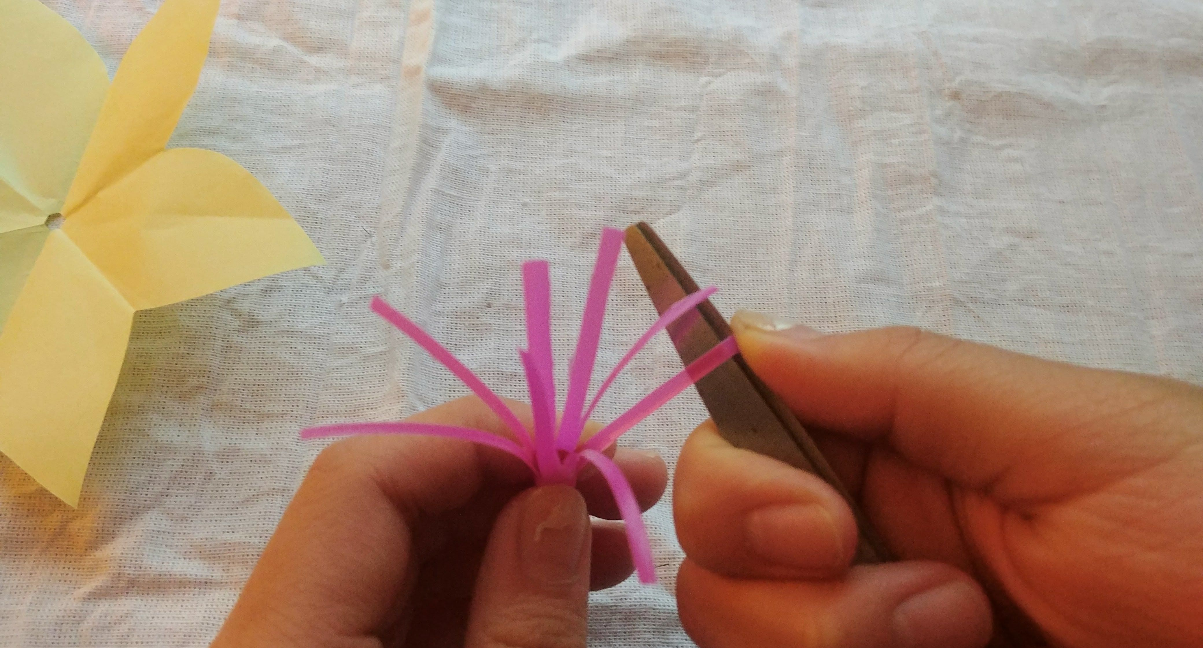 Picture of The Stem and the Filaments