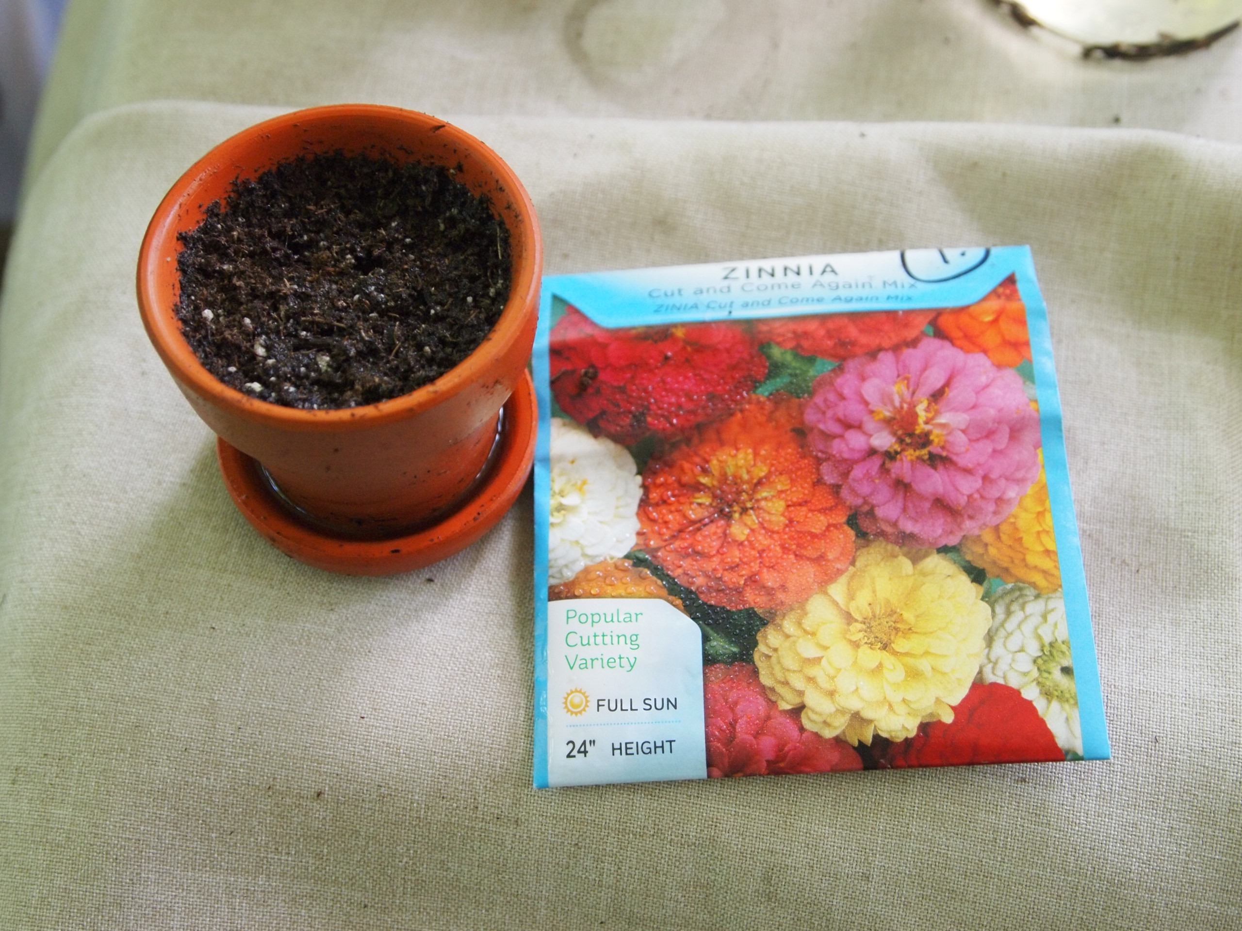 Picture of A Few Items Needed for Fast Seed Sprouting