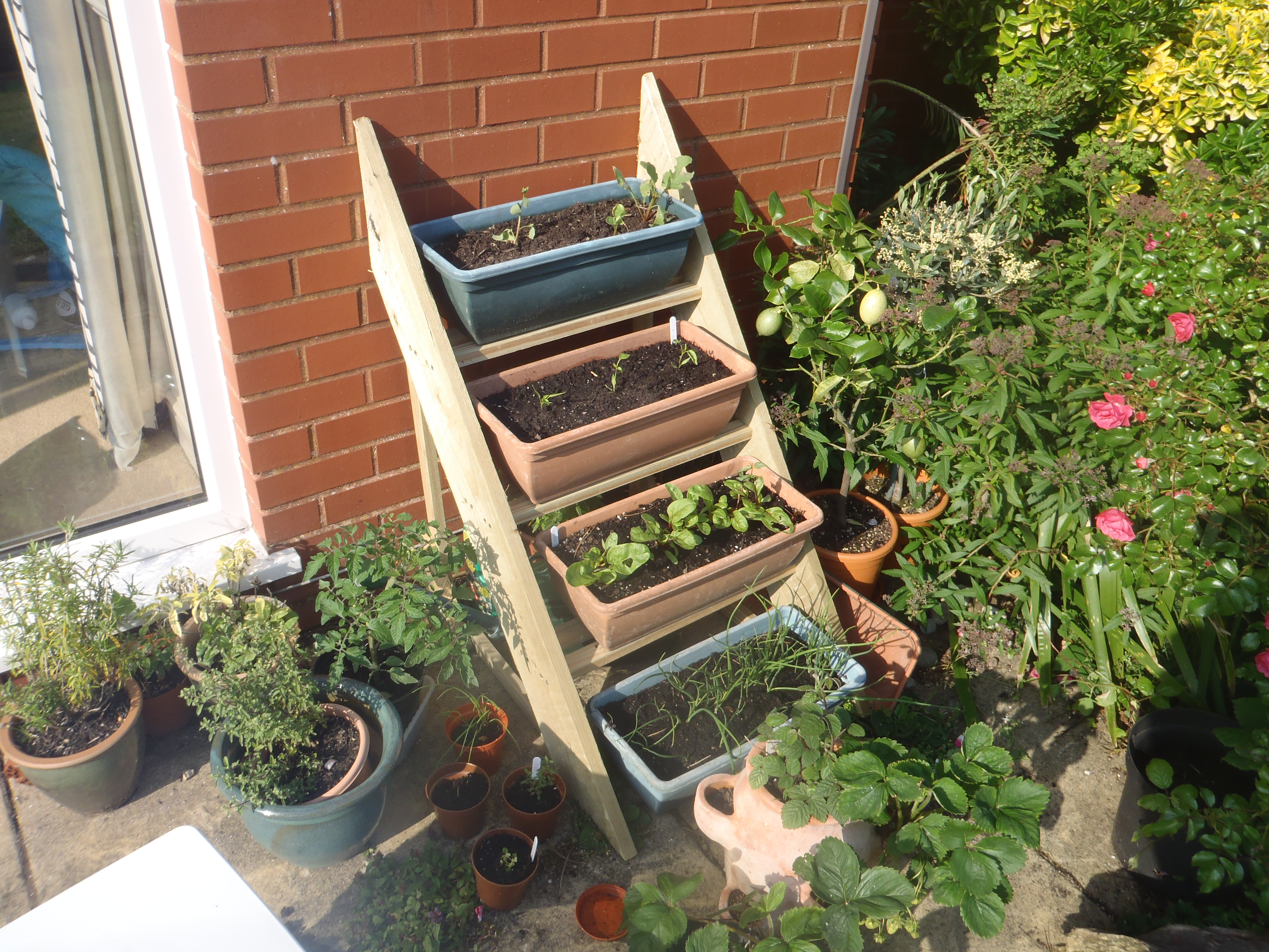Picture of Simple Planter Ladder