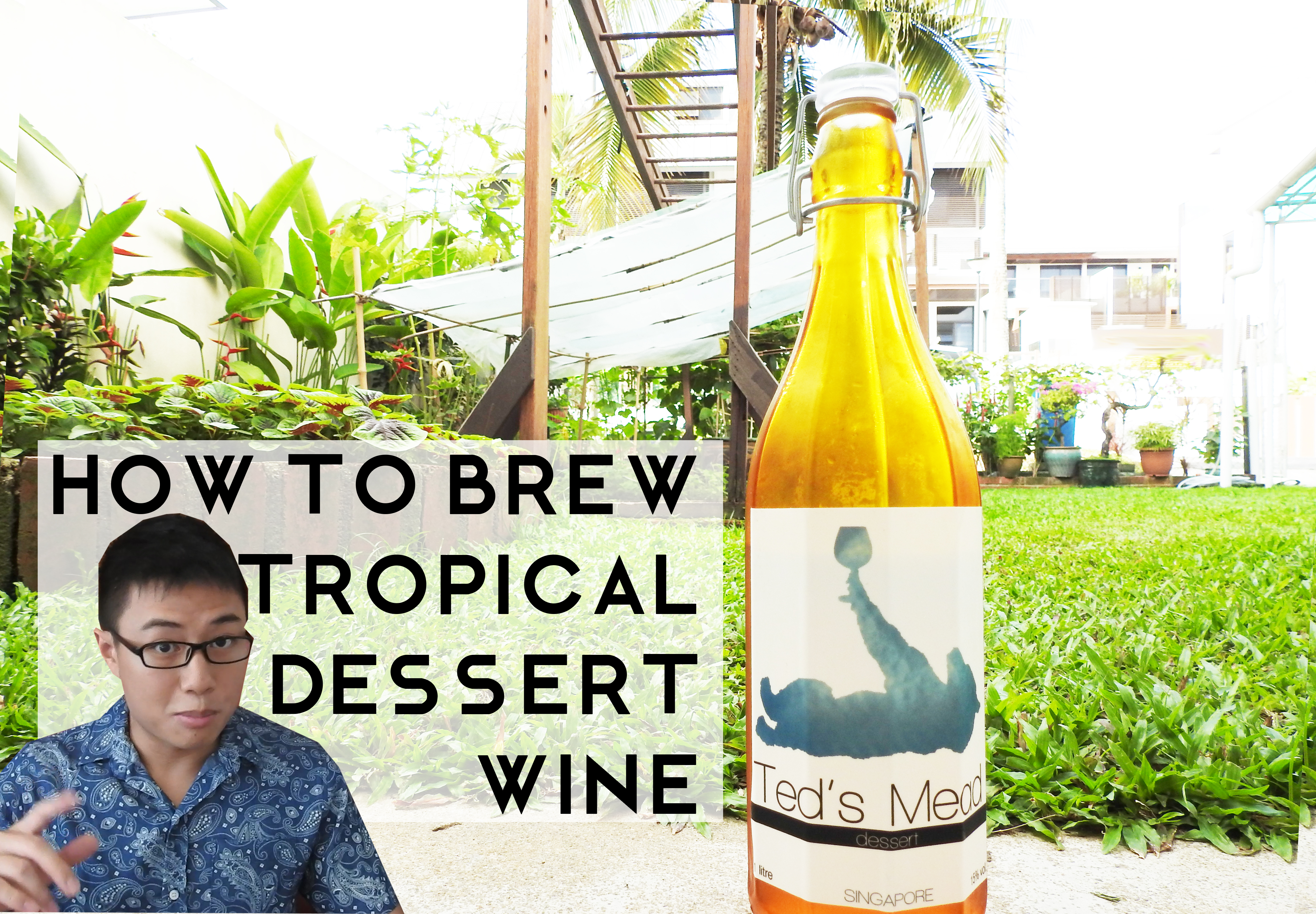 Picture of How to Make Tropical Dessert Wine (in Climates Like Singapore!)