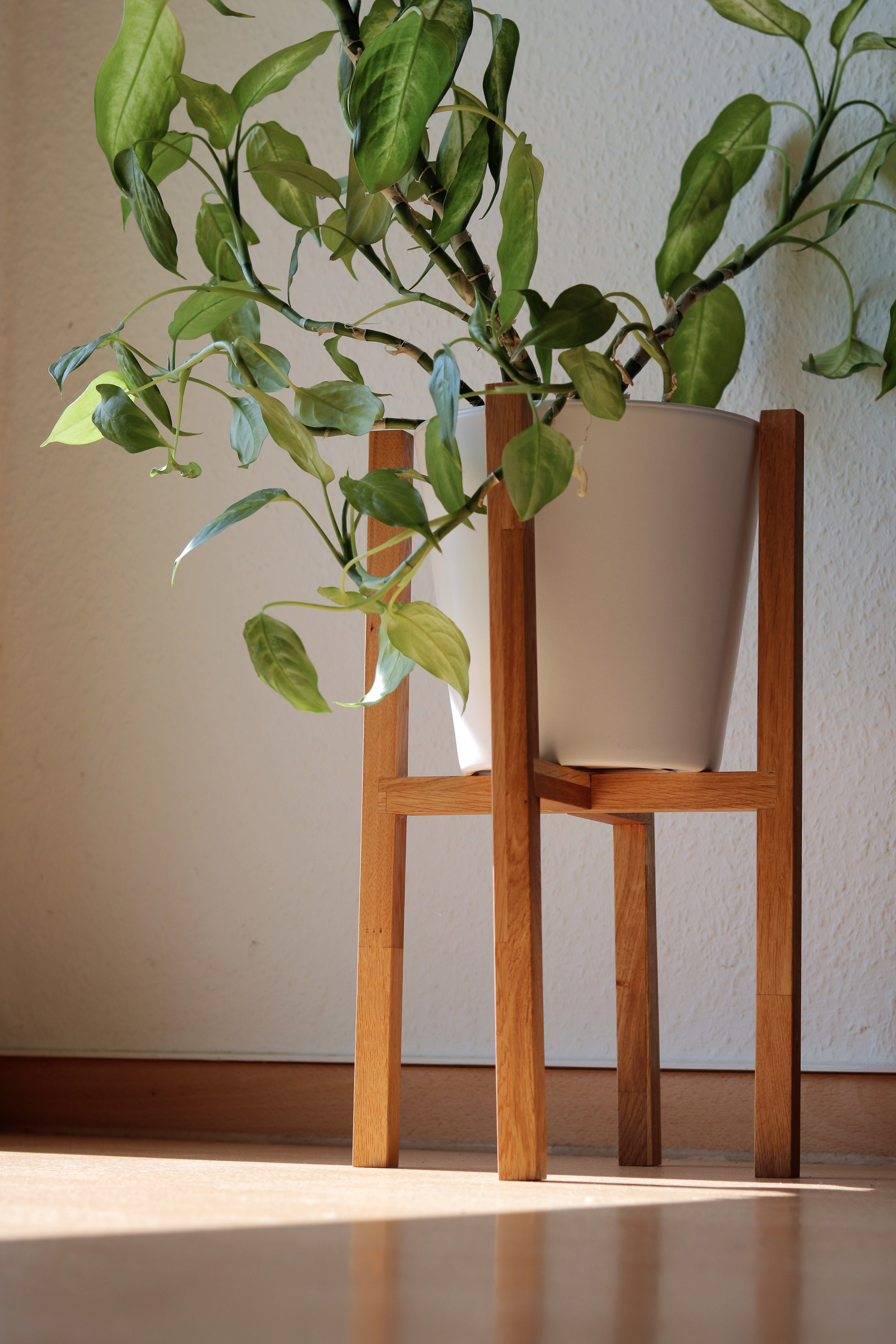 Picture of // SIMPLE & LOW BUDGET // Plant Stand