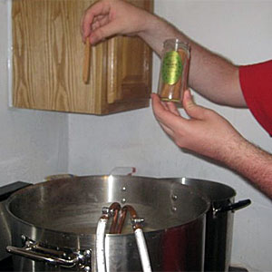 Picture of The Boil