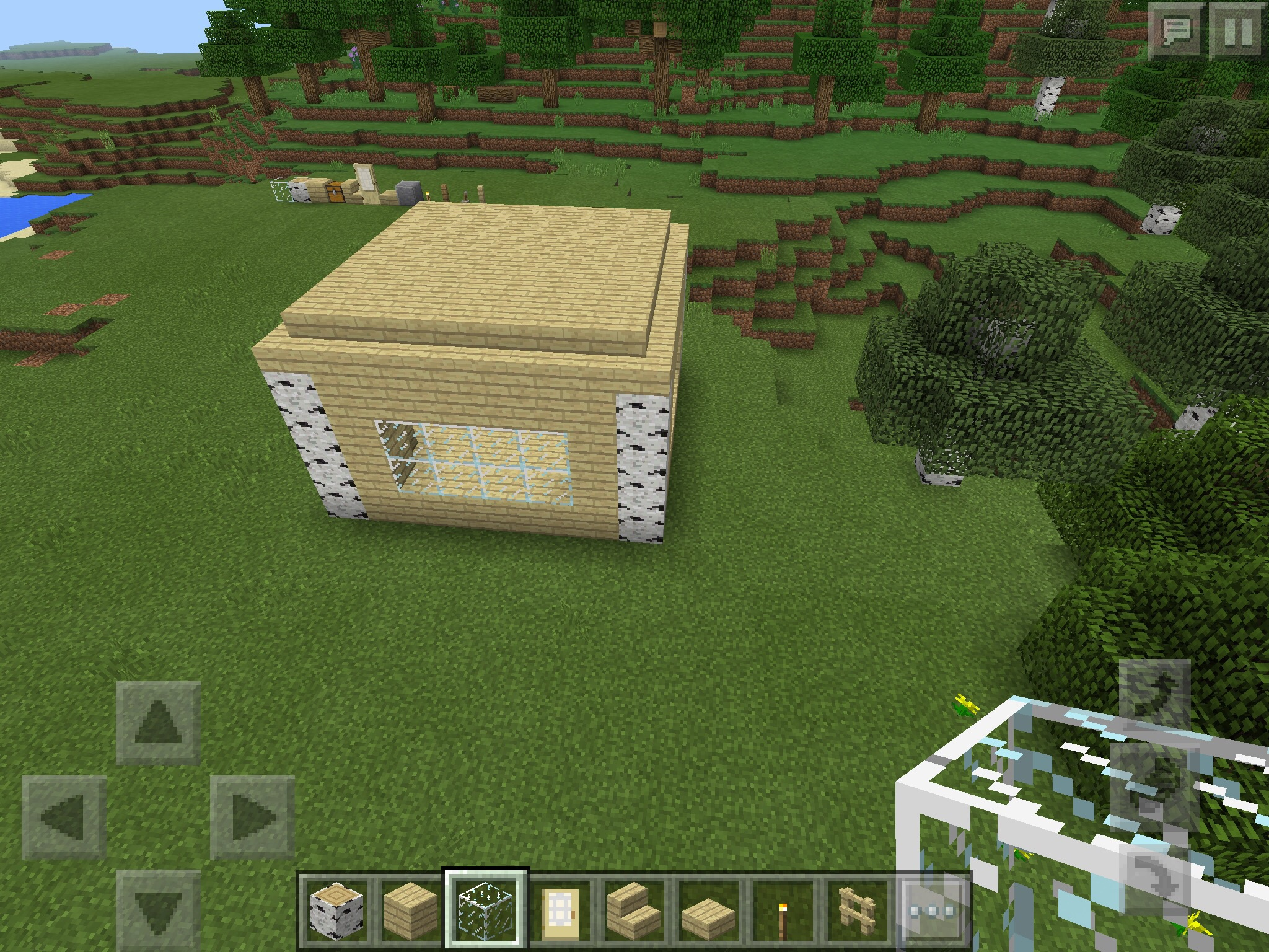 Picture of Fill in the Walls and Add Windows