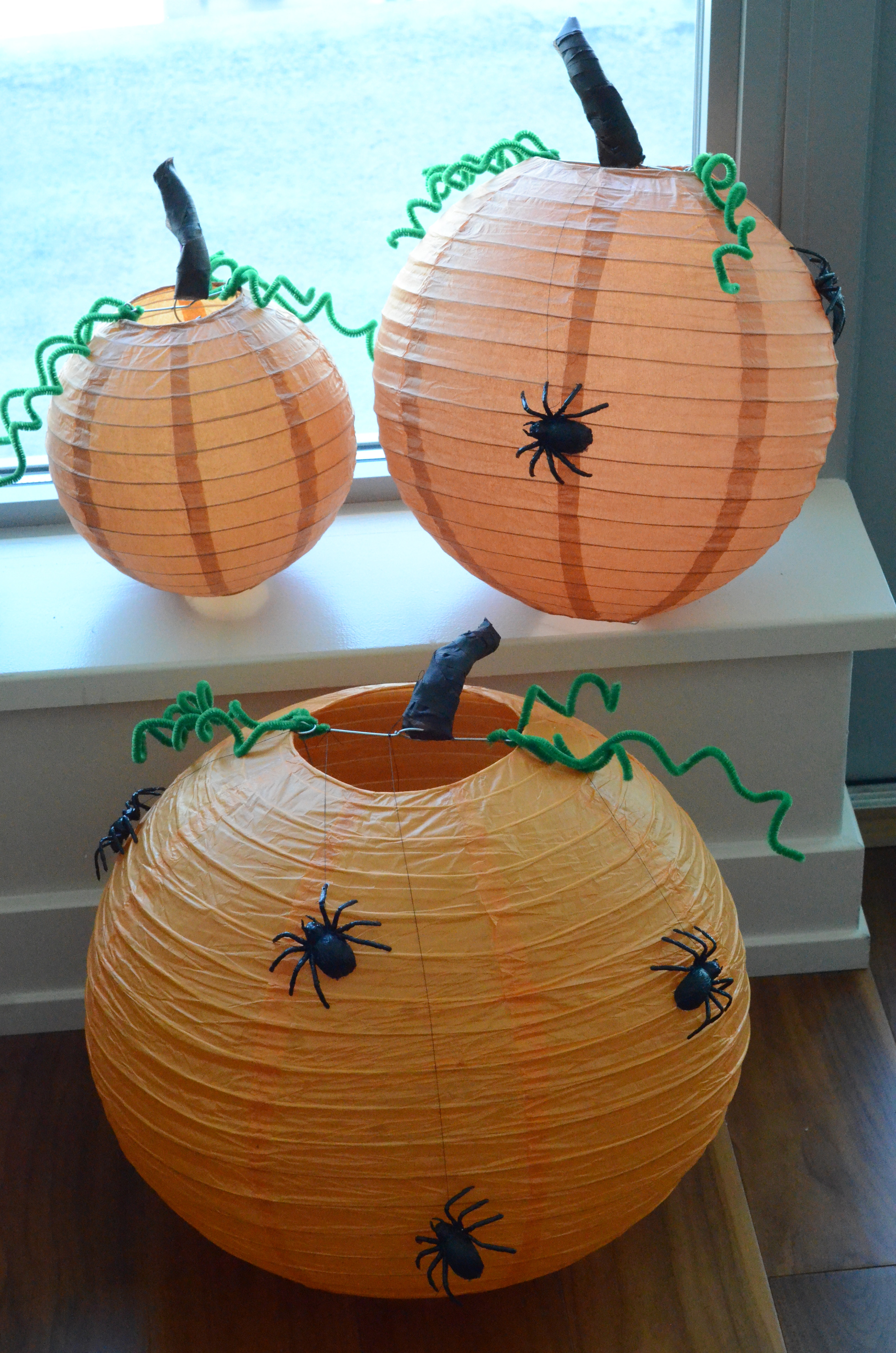 Picture of Chinese Lantern Pumpkins