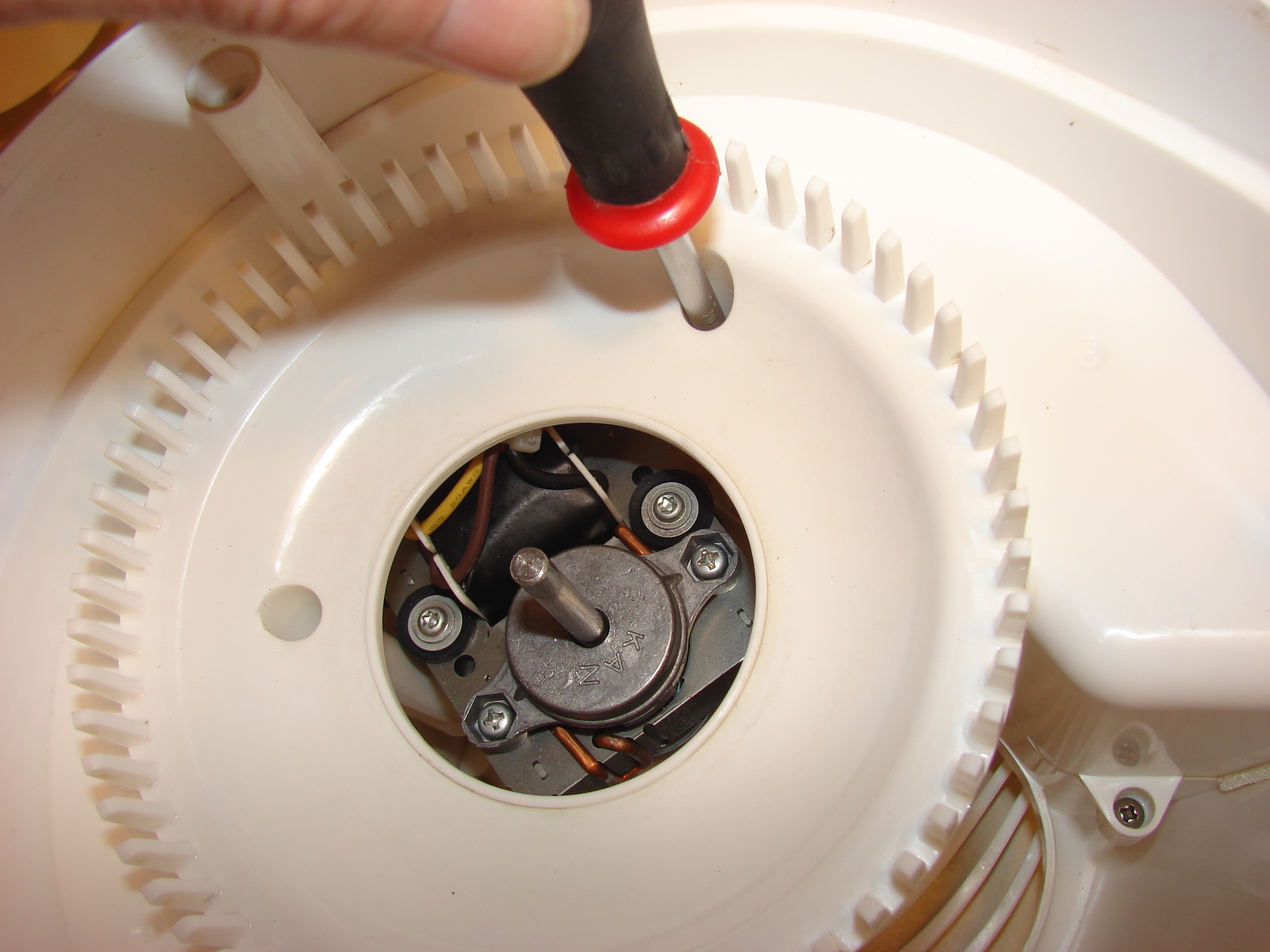 Picture of Removing and Cleaning Motor Housing