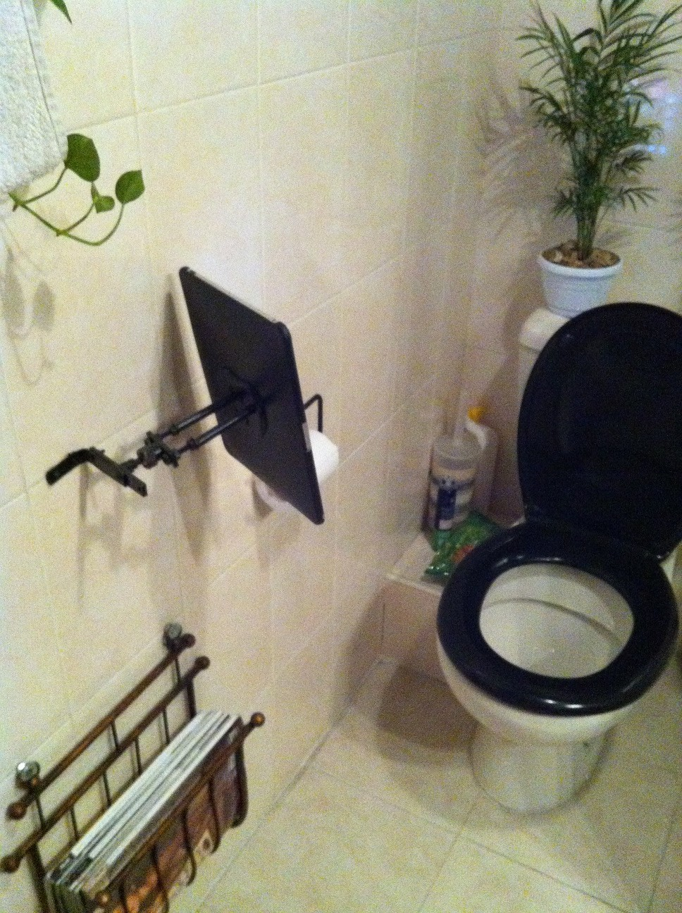 "Picture of IPad for Bathroom  -  "" IToilet """