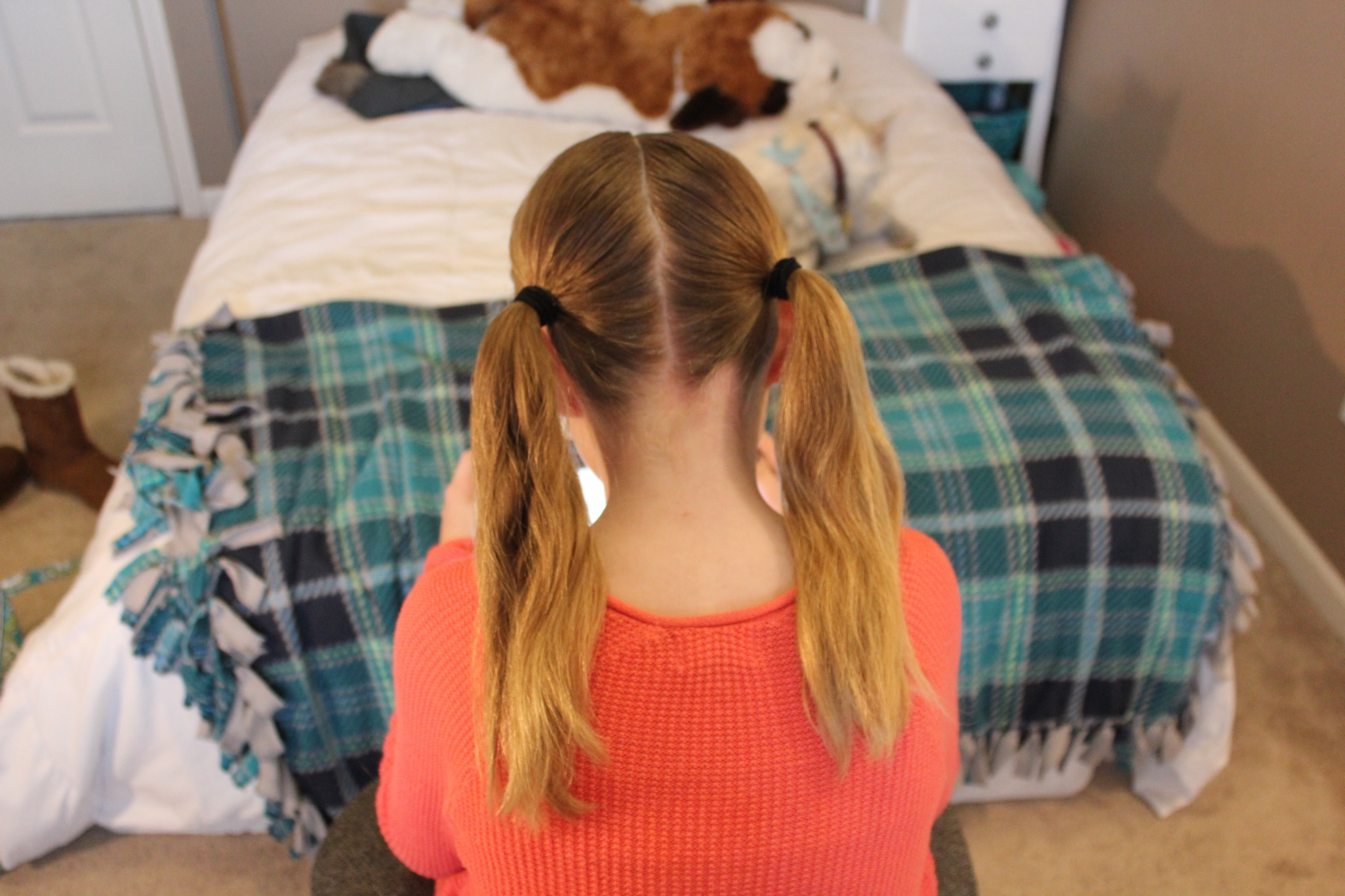 Picture of Put Into Pigtails