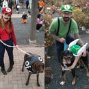 Mario themed costumes for dogs and people