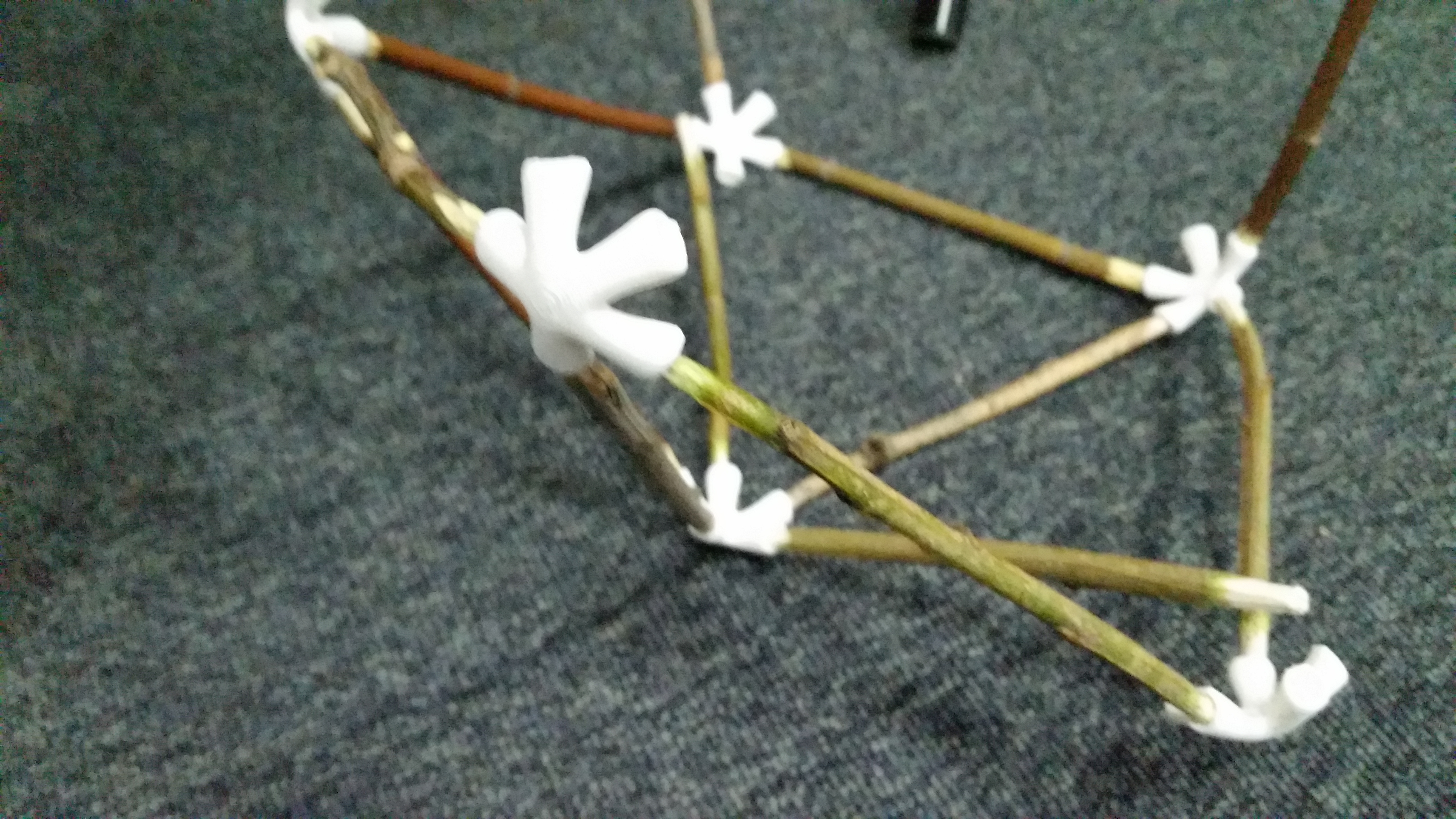 Picture of Connecting the Sticks and Leaves