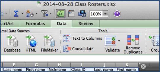 Picture of Click the Remove Duplicates Icon
