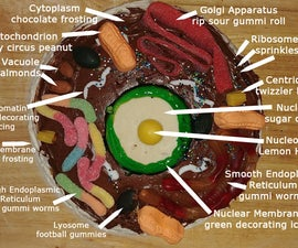 Animal Cell Cake of Celliness