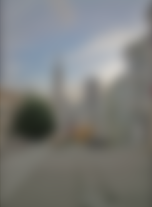 Picture of Gaussian Blur and Soft Light