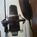 Shock Mount and Pop Filter!