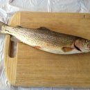 How To Grill Trout